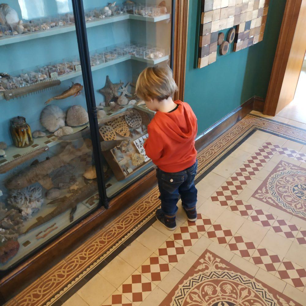 Et si le musée m'était conté ?